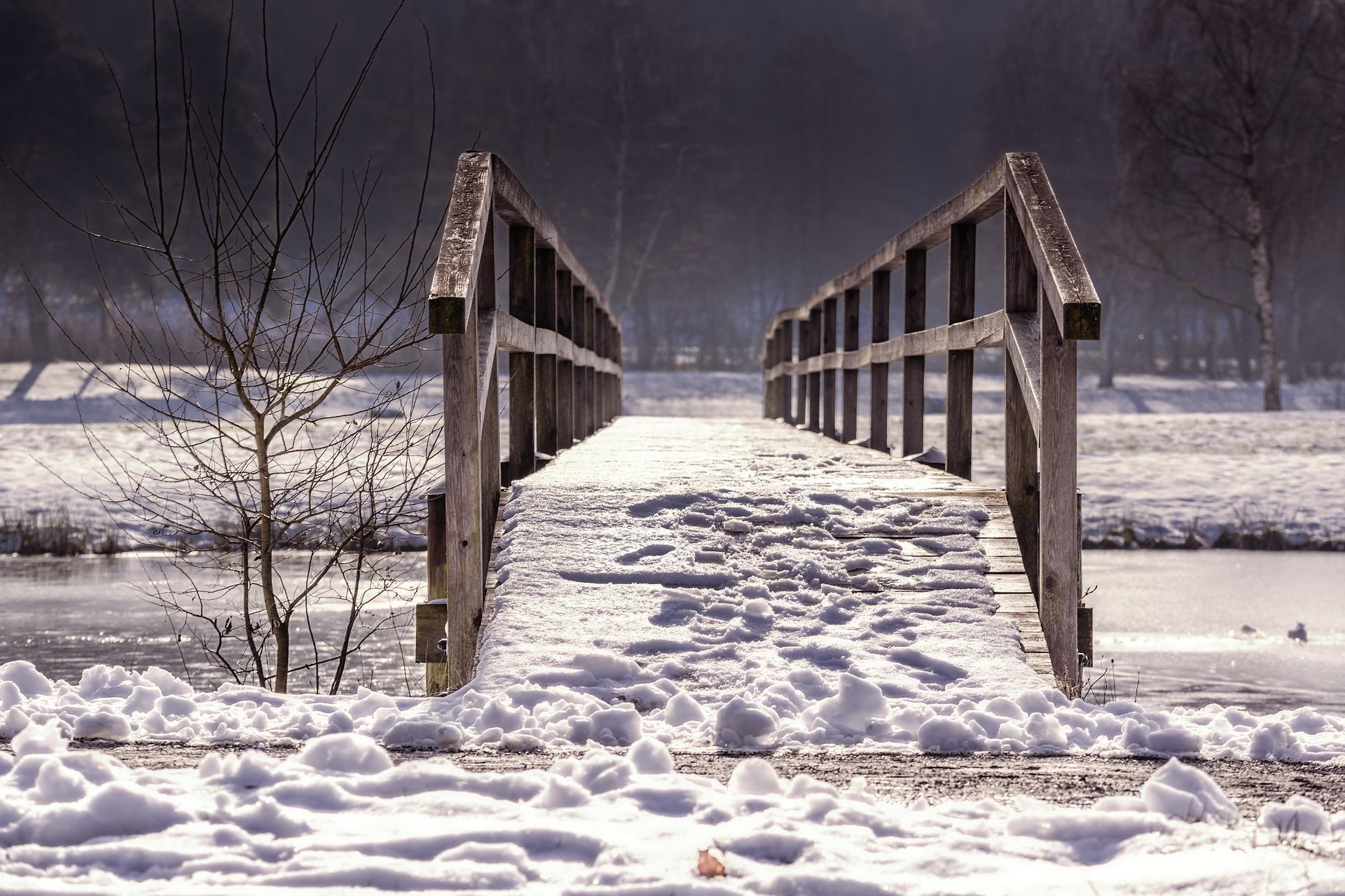 Venha antes do inverno