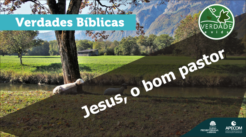 0642 – Jesus, o bom pastor