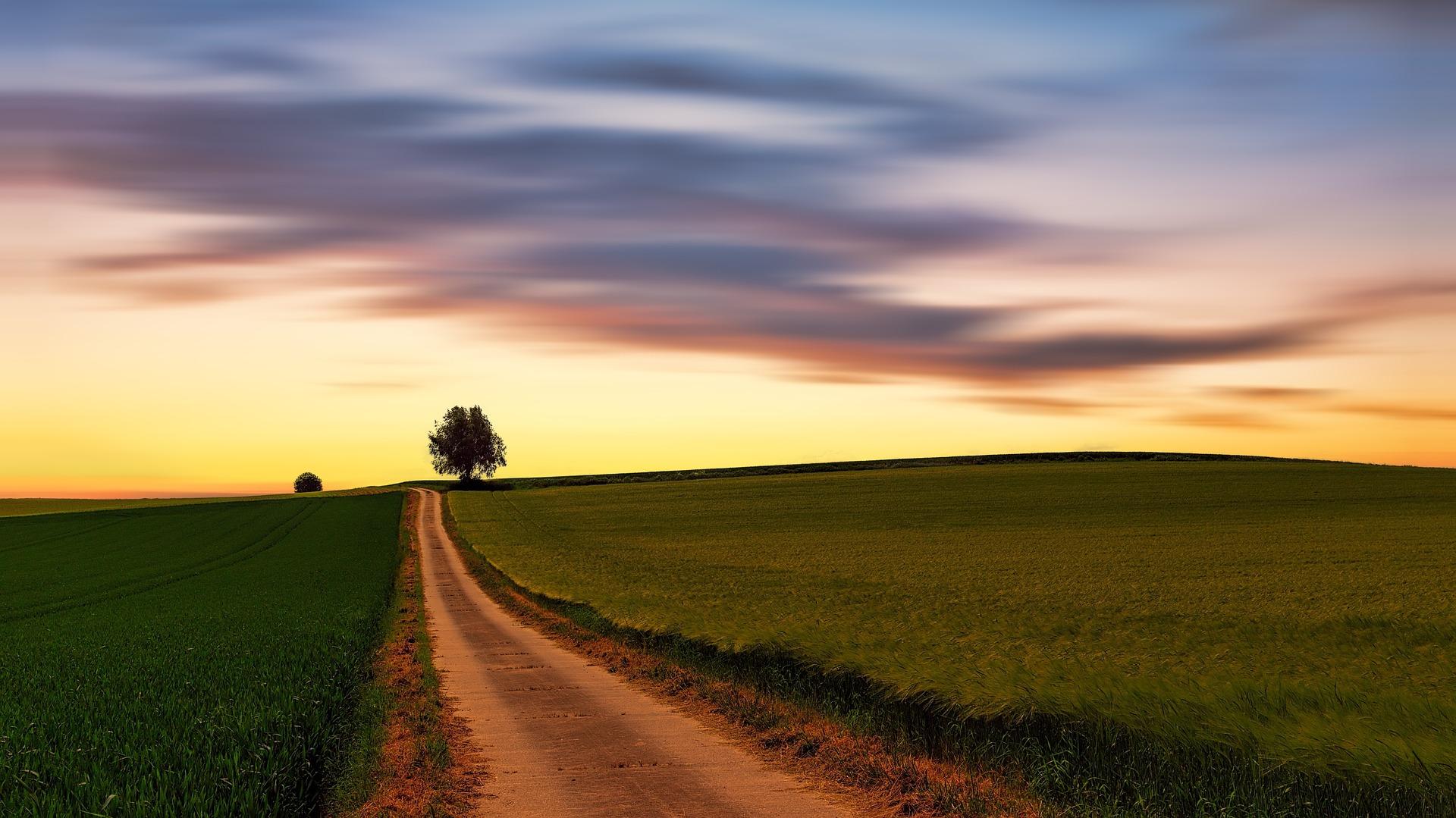 O caminho do avivamento