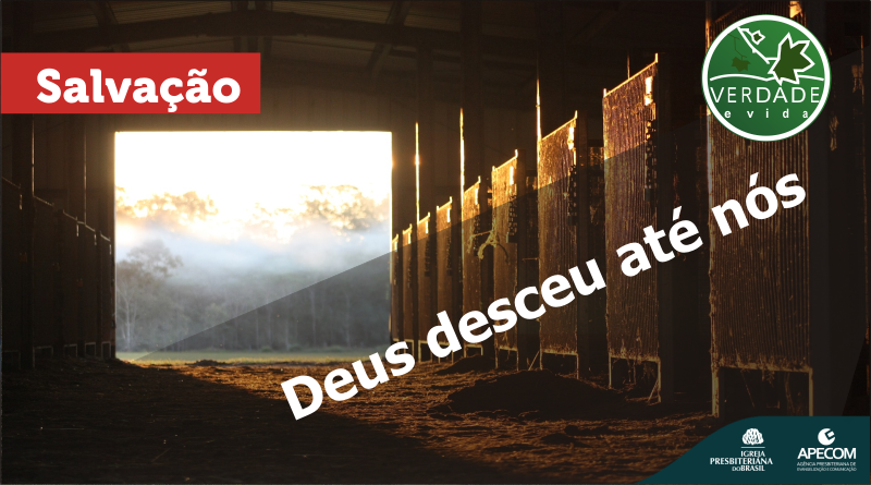 0693 – Deus desceu até nós