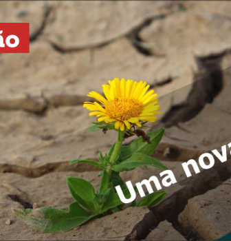 0657 – Uma nova vida