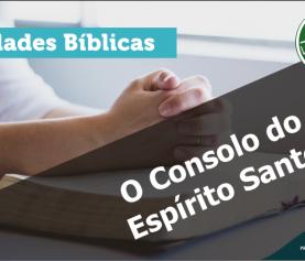 0664 – O Consolo do Espírito Santo
